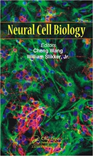 NEURAL CELL BIOLOGY (HC)