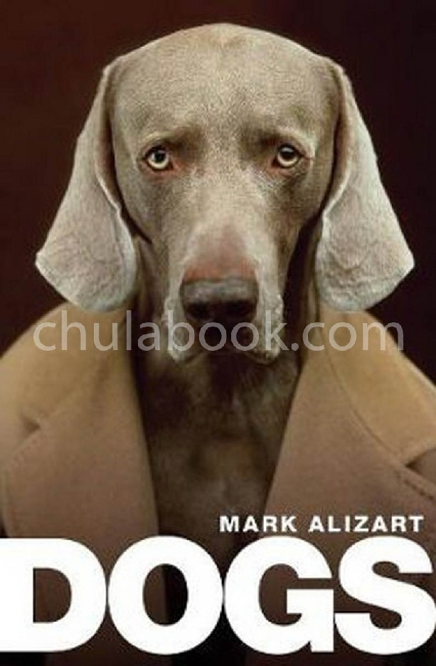 DOGS: A PHILOSOPHICAL GUIDE TO OUR BEST FRIENDS (HC)