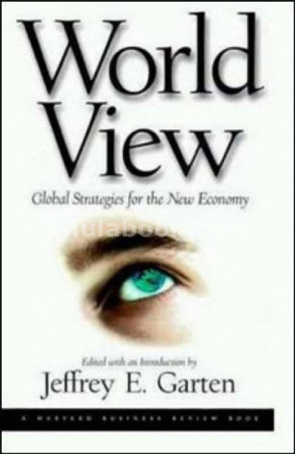 WORLD VIEW: GLOBAL STRATEGIES FOR THE NEW ECONOMY (HC)