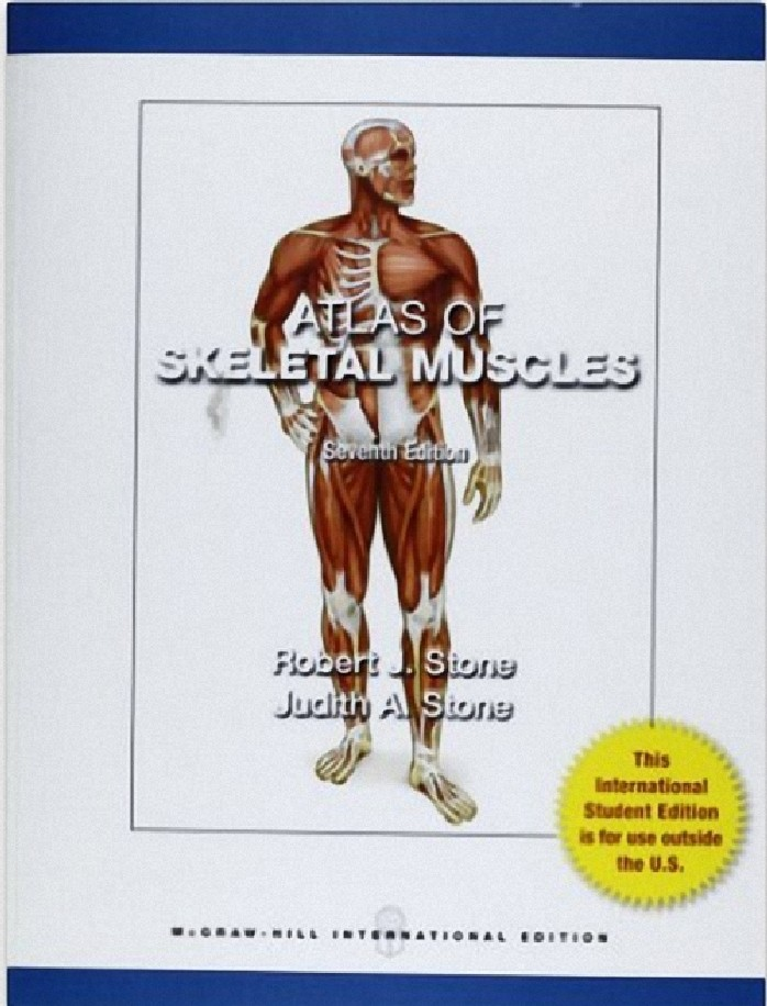 ATLAS OF SKELETAL MUSCLES (IE)