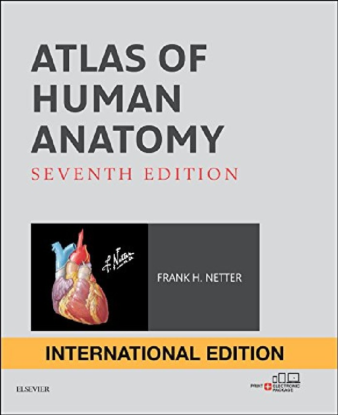 ATLAS OF HUMAN ANATOMY (IE)