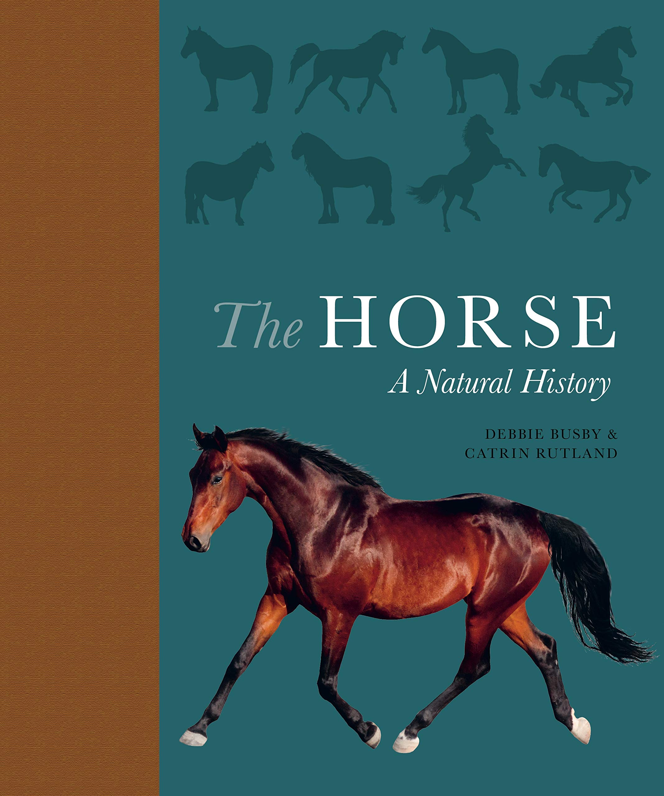 THE HORSE: A NATURAL HISTORY (HC)