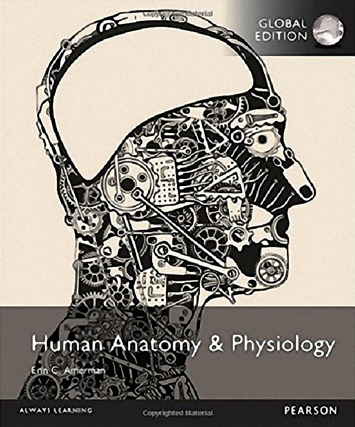 HUMAN ANATOMY AND PHYSIOLOGY (GLOBAL EDITION)