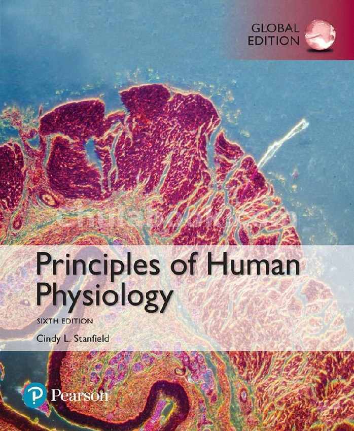 PRINCIPLES OF HUMAN PHYSIOLOGY (GLOBAL EDITION)