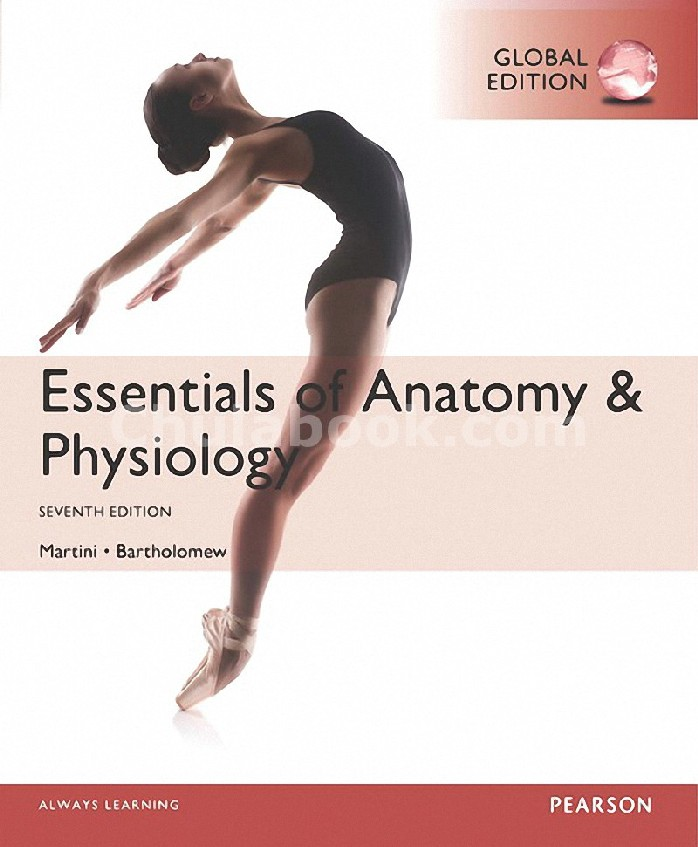ESSENTIALS OF ANATOMY AND PHYSIOLOGY (GLOBAL EDITON)